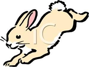 300x227 Rabbit Clipart Bunny Hopping