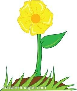 255x300 Collection Of Flower Growing Clipart High Quality, Free