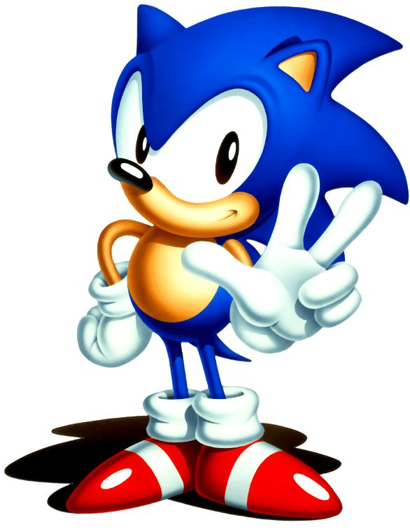 586x760 68 Best Fiesta Sonic Images On Hedgehog, Hedgehogs
