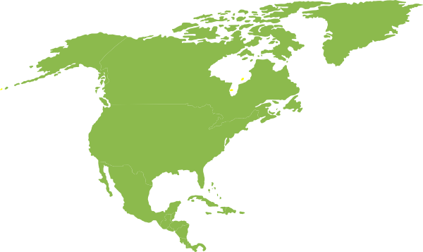600x357 North And South America Clipart