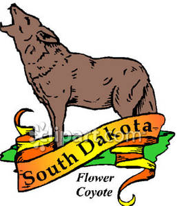 257x300 State Animal Of South Dakota, The Flower Coyote With Gold South