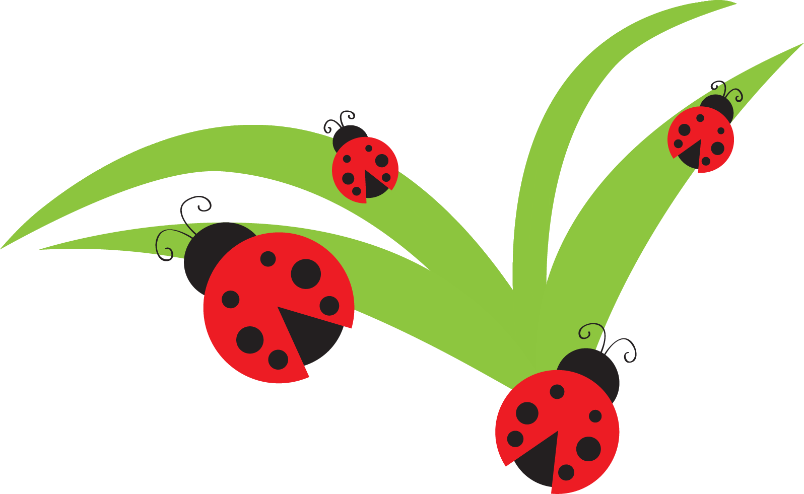 1596x981 Ladybug Border Clip Art Clipart Collection