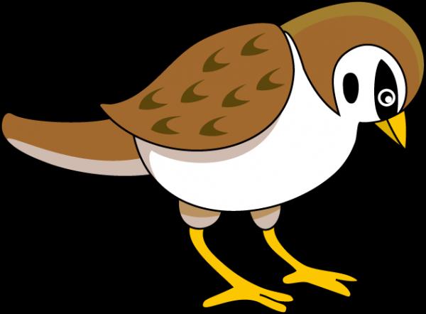 600x442 Sparrow Clipart Nice Clip Art