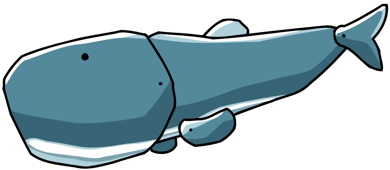1326x579 Sperm Whale Scribblenauts Wiki Fandom Powered By Wikia