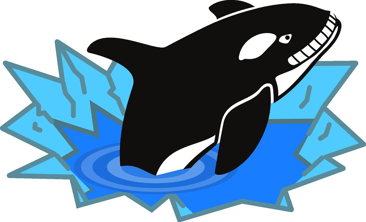 1280x778 Sperm Whale Baby Orca Killer Whale Clip Art