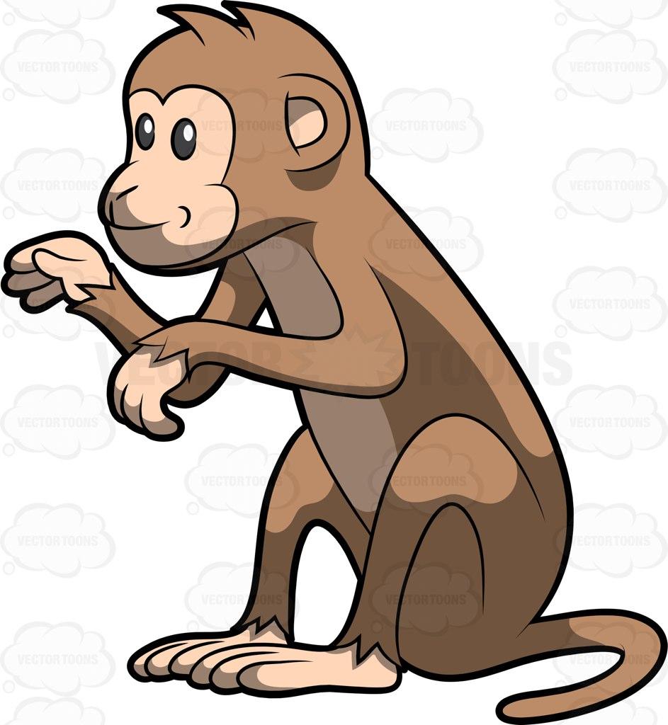 943x1024 Monkey Sitting Clipart