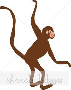 236x296 Spider Monkey Culture Amp Feet Spider Monkeys