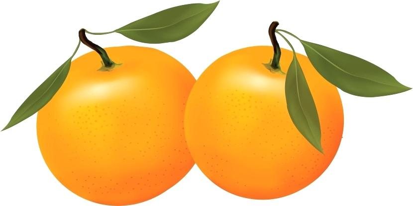 830x415 Free Clip Art Fruit Orange Fruit Cartoon Free Clip Art Images Free