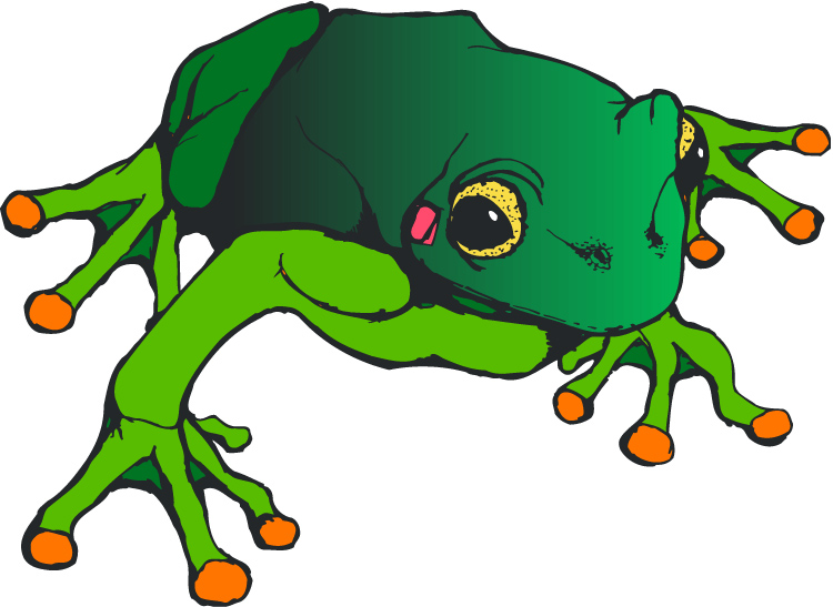 750x547 Amphibian Clipart Life Sciences