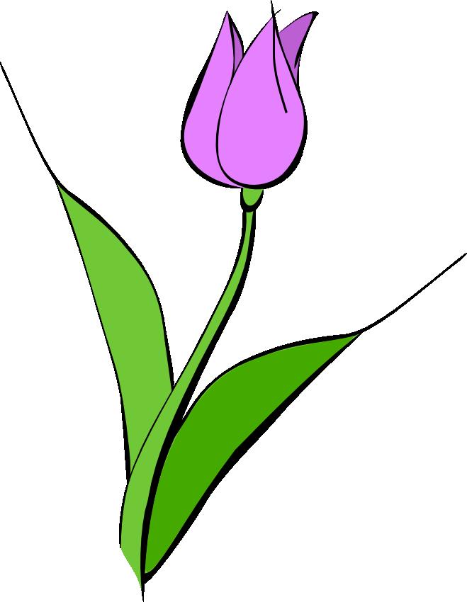 659x850 Tulips Borders Clip Art