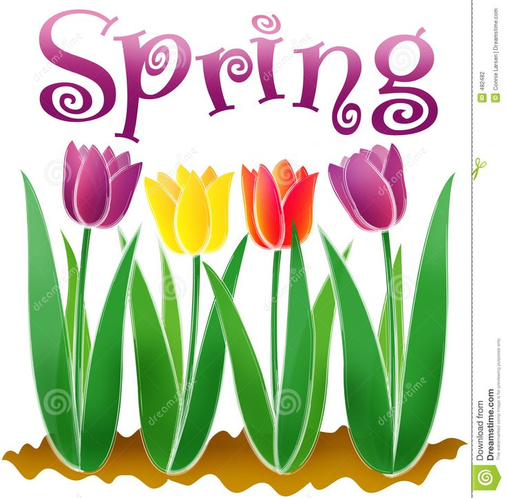 Spring Time Clipart