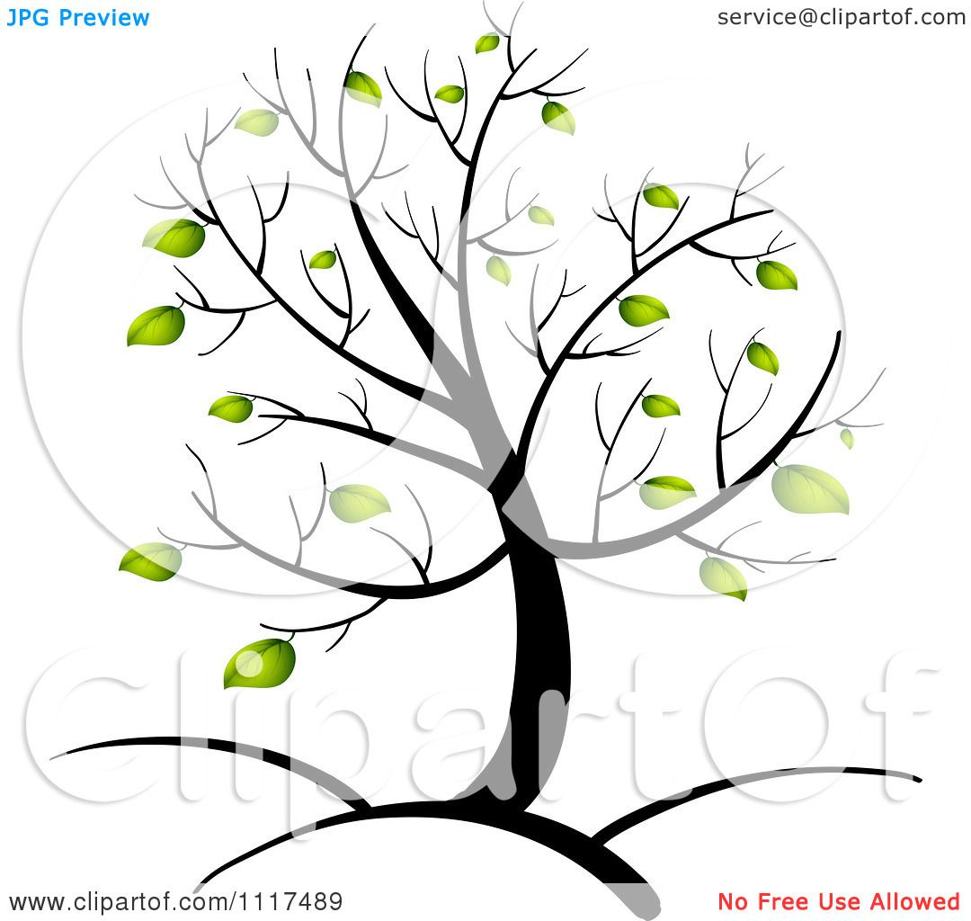 1080x1024 Vector Clipart Of A Spring Tree With Green Foliage