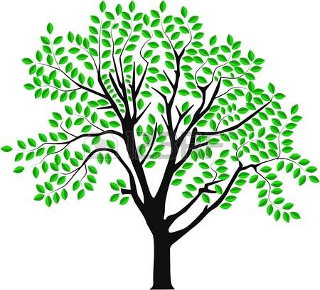 450x408 Branching Tree Clipart Amp Branching Tree Clip Art Images
