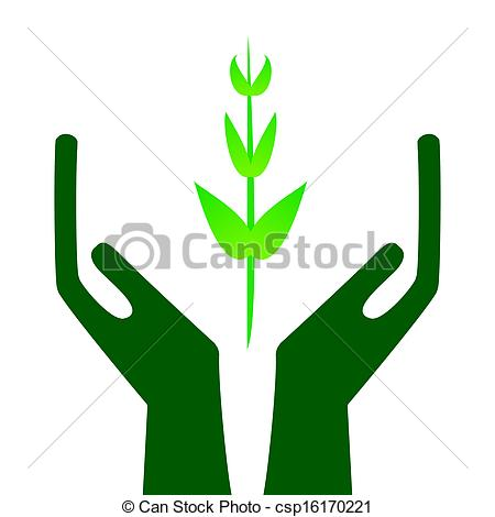 450x470 Green Sprout In Hands On White Background, Illustration