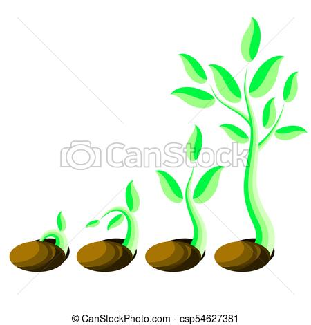 450x470 Phases Plant Growth. Little Green Sprout Seedling Vector