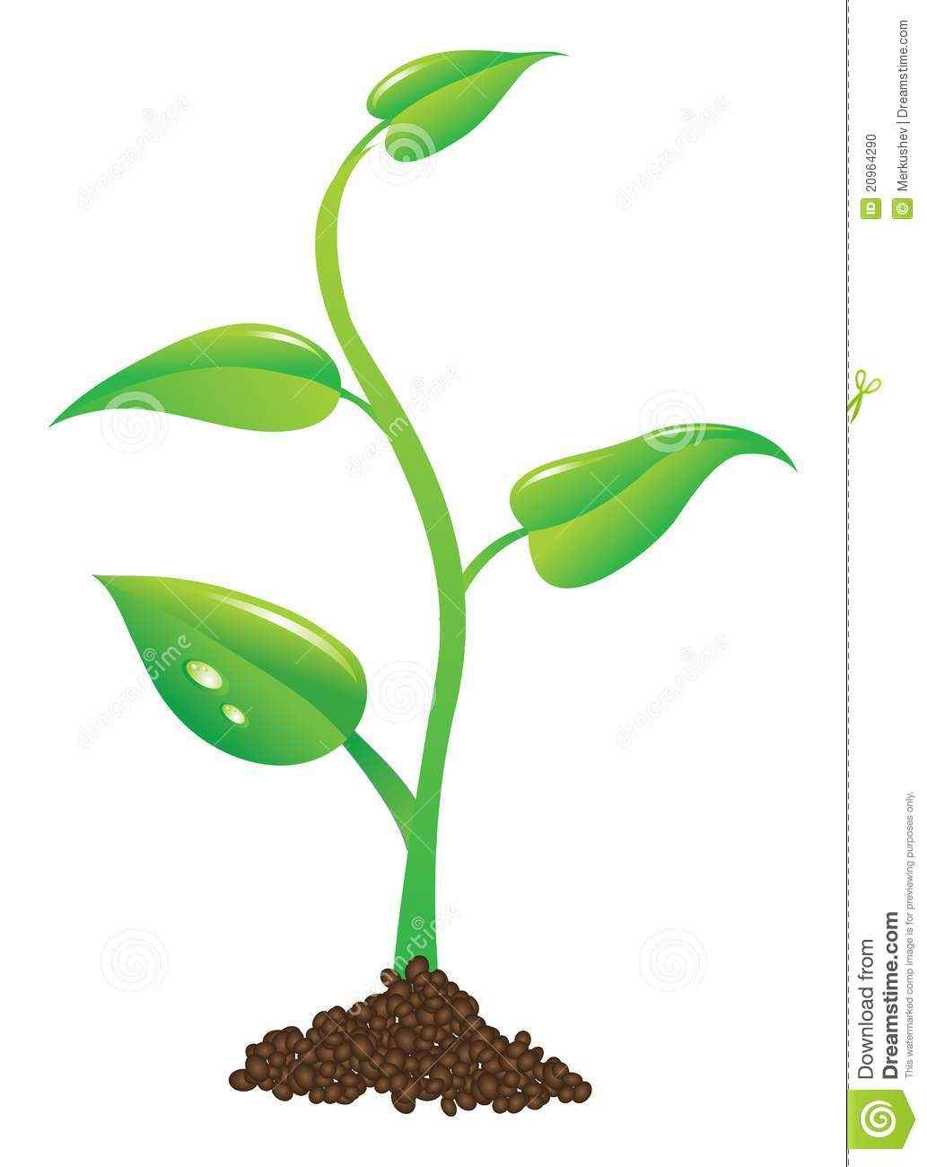 1033x1300 Plant Sprout Clip Art, Tree Planting Clip Art
