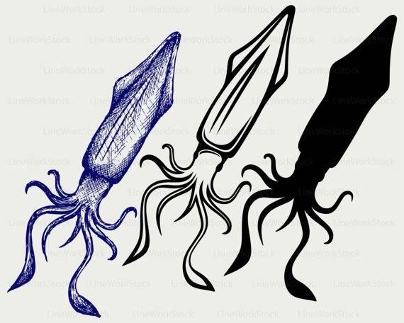 570x456 Squid svgsquid clipartsquid svgsquid silhouettesquid cricut