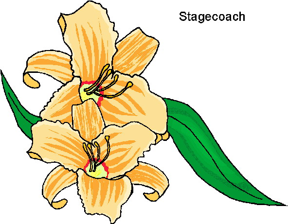592x461 Flowers Clip Art Flowers And Plants