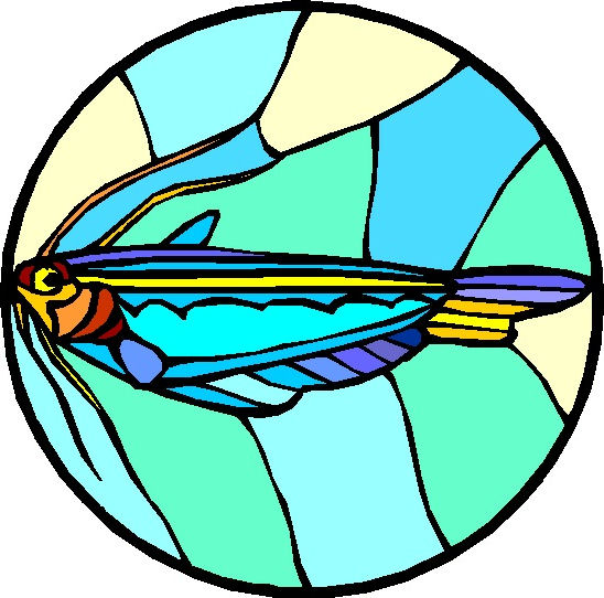 548x542 Stained Glass Clipart