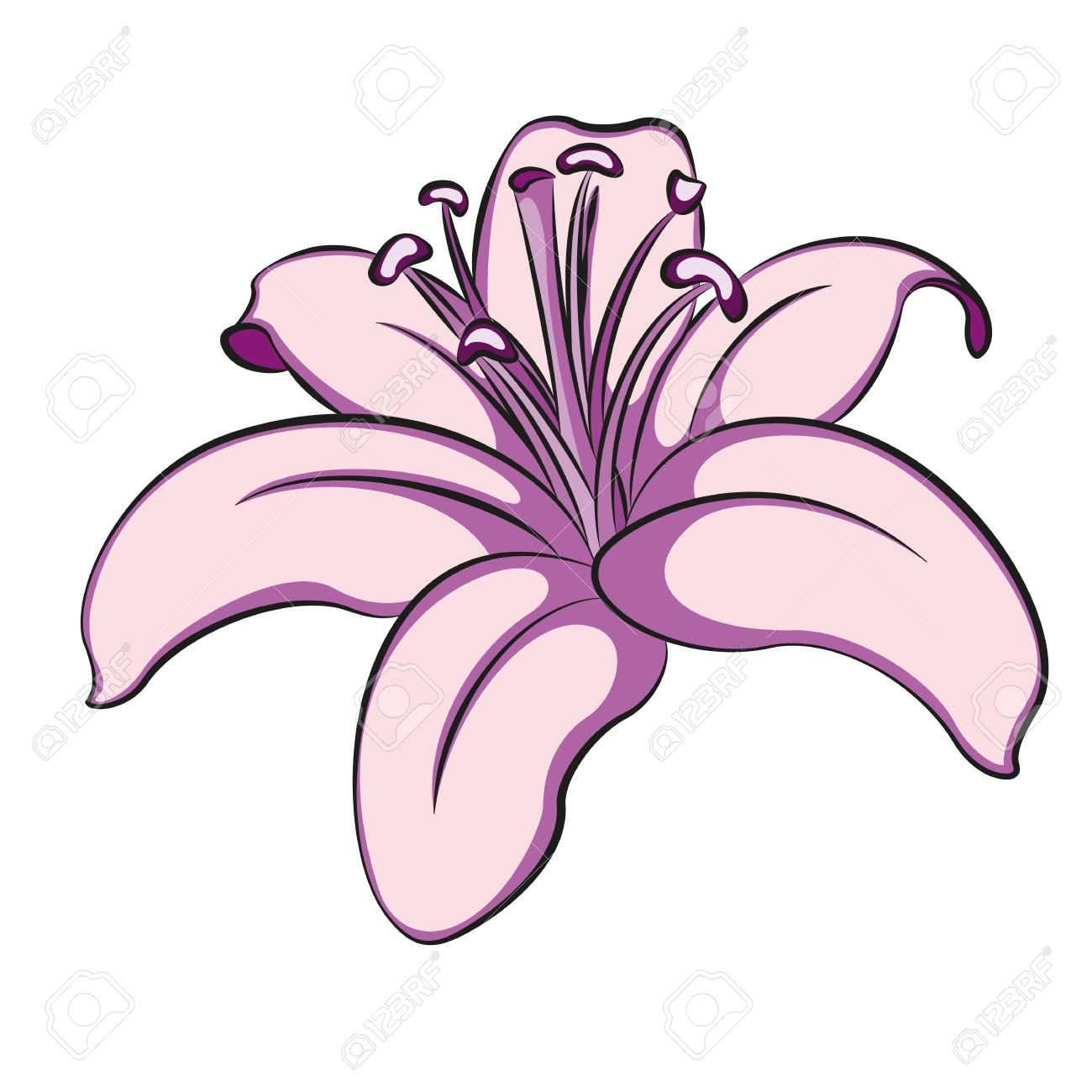 stargazer lily clipart at getdrawings com free for personal use rh getdrawings com water lily clipart lily clip art border