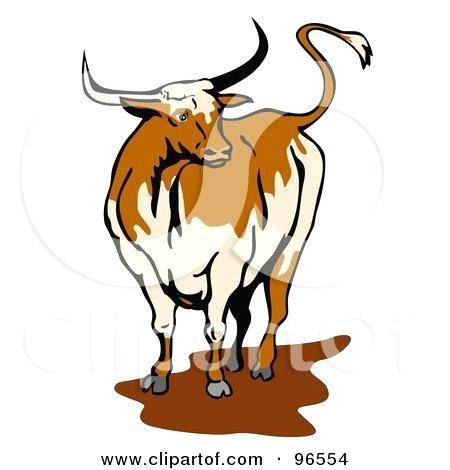 Steer Clipart