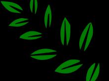 220x165 Leaf Stem Clipart 10 Leaf Stem Clip Art