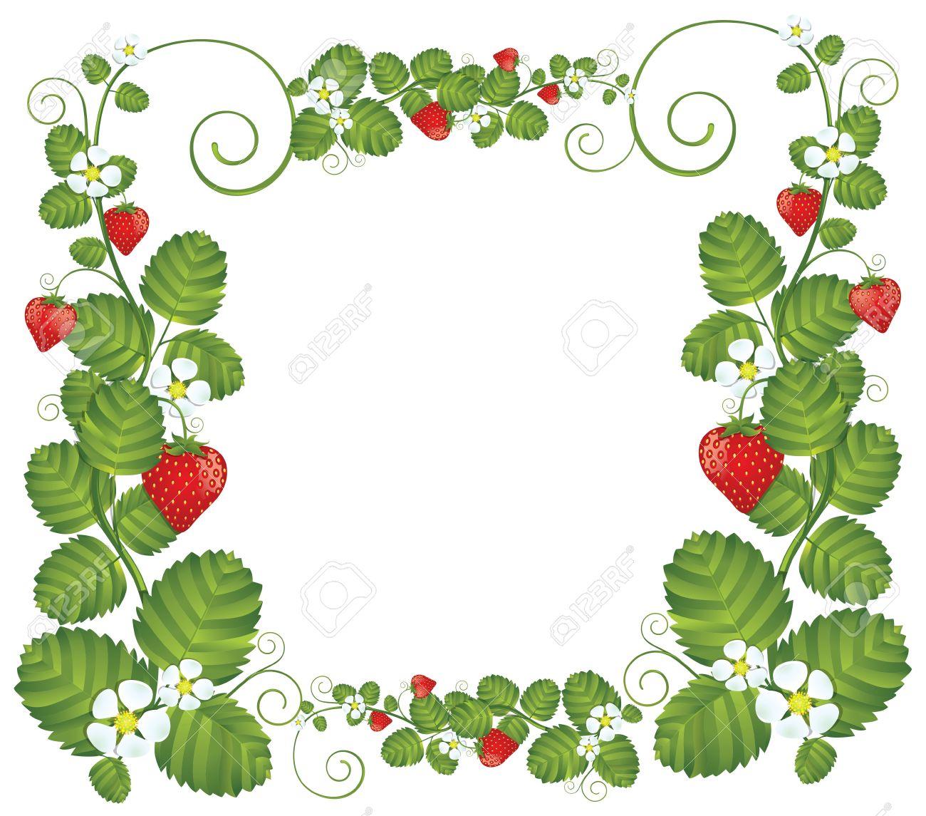 1300x1145 Drawn Strawberry Transparent Background