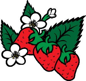 300x285 Strawberries Clip Art Free Vector 4vector