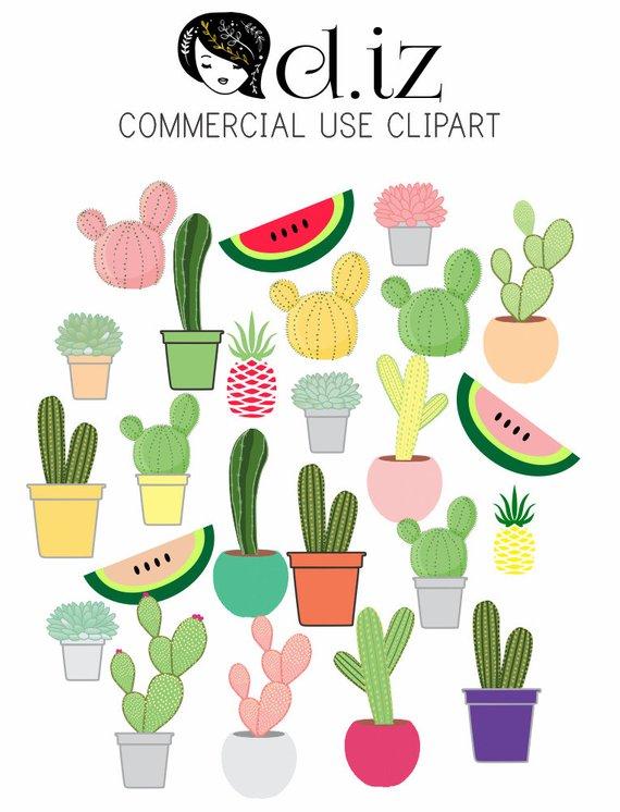 570x746 Cactus Clipart, Succulent Clip Art Features Pineapple