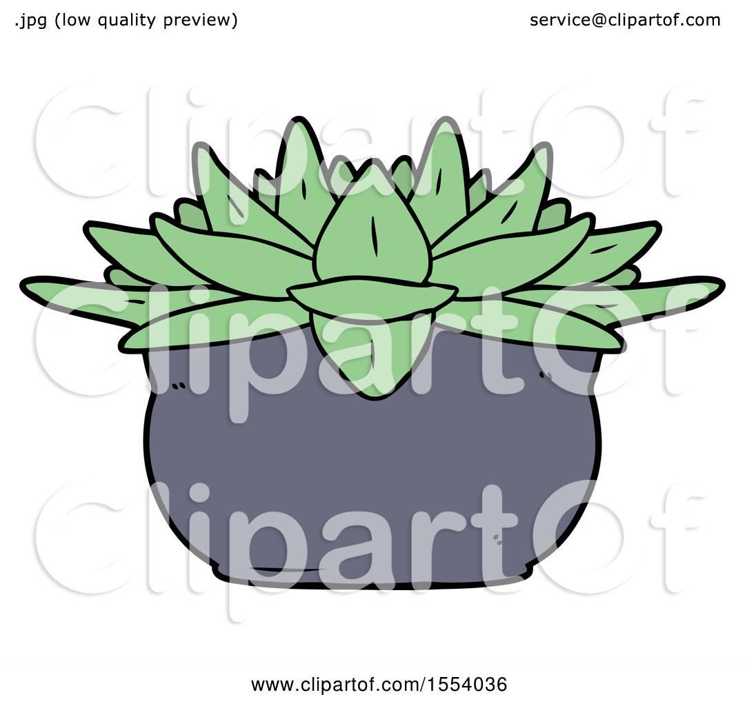 1080x1024 Cartoon Succulent Plant By Lineartestpilot