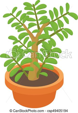 324x470 Crassula Succulent Plant Icon, Cartoon Style. Crassula Eps