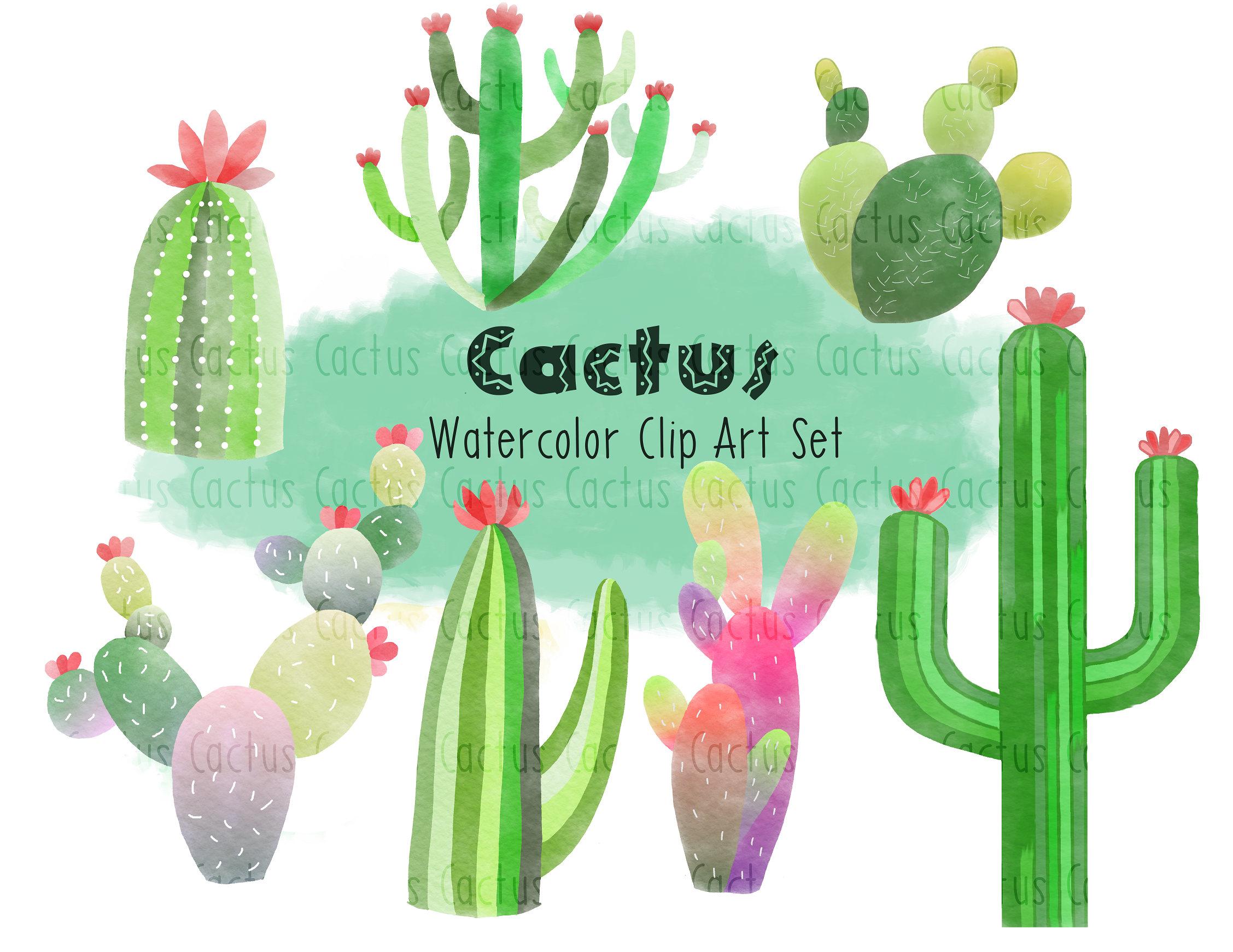 2255x1741 Watercolor Cactus Clip Art Cactus Clip Art Succulent Clip Art