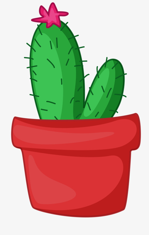 508x800 Cacti, Thorn, Cactus, Plant Png Image And Clipart For Free Download