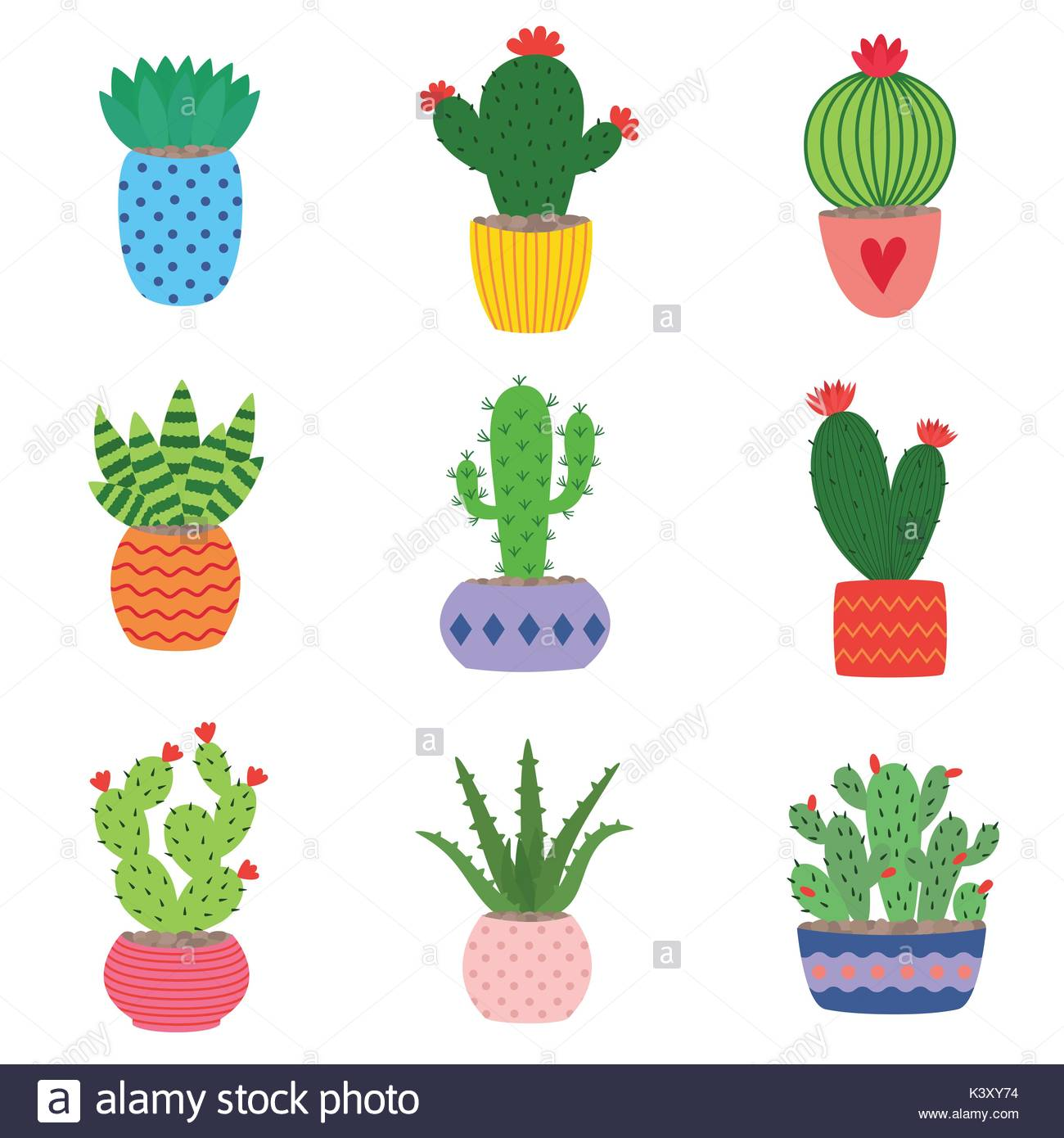 1300x1390 Cactus And Succulents Stock Vector Images