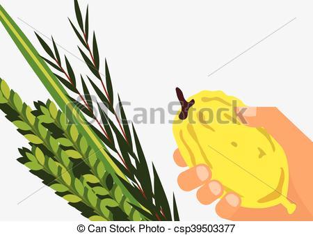450x338 Jewish Holiday Sukkot. Lulav ,etrog, Arava And Hadas. Four