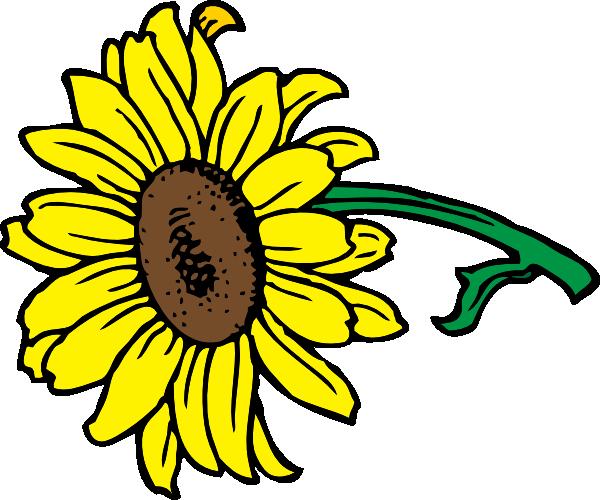 600x500 Sunflower Clip Art