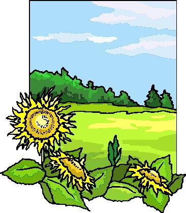 366x419 Sunflower Clip Art Clipart Panda