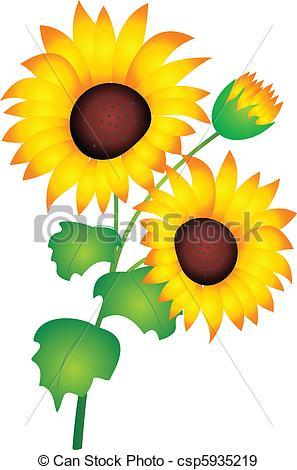 297x470 Sunflower Vector. Sunflower Isolated On White Background . Eps