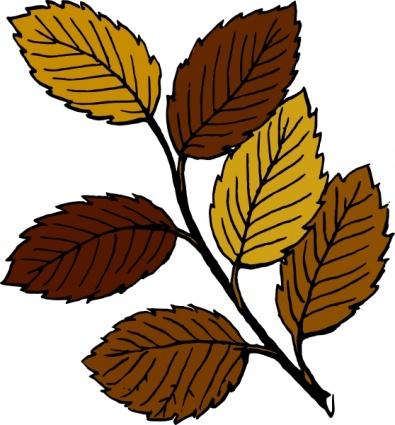 395x425 Autumn Leaves On Branch Clip Art Clip Arts, Free Clip Art