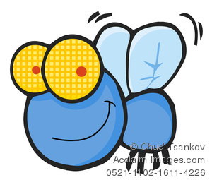 300x255 Top 91 Fly Clipart