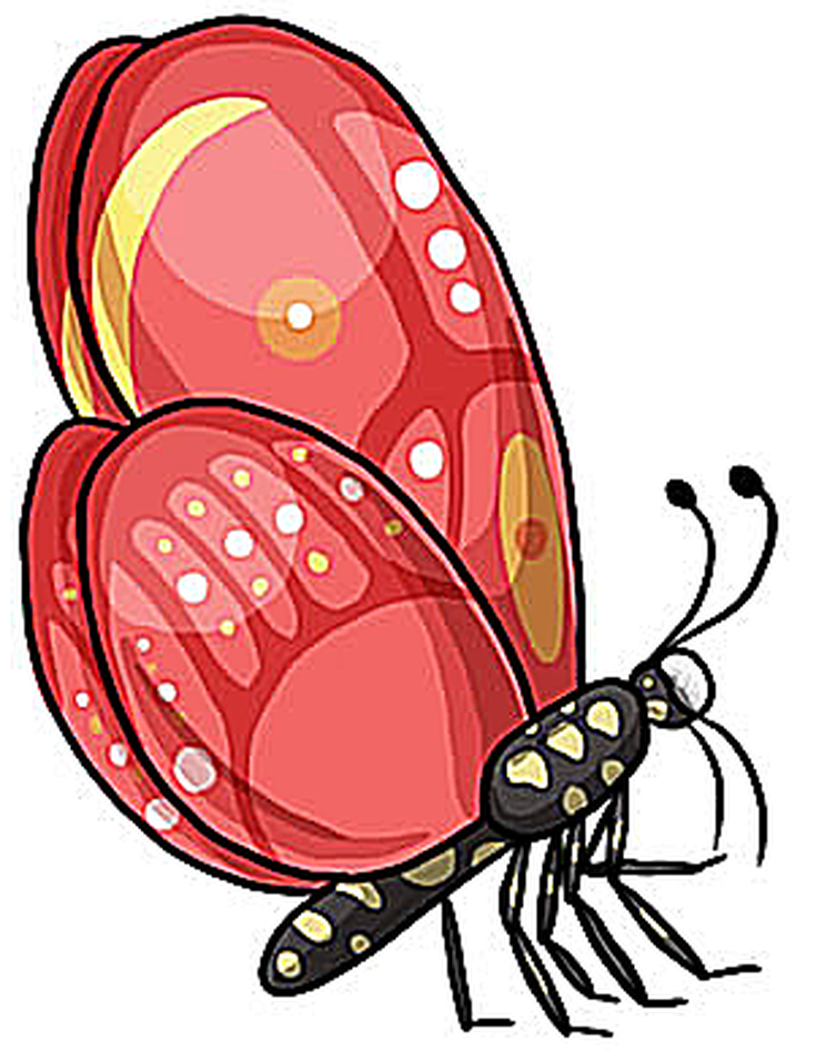 735x947 Download Beautiful Images Of Butterfly Clip Art For Free Clip
