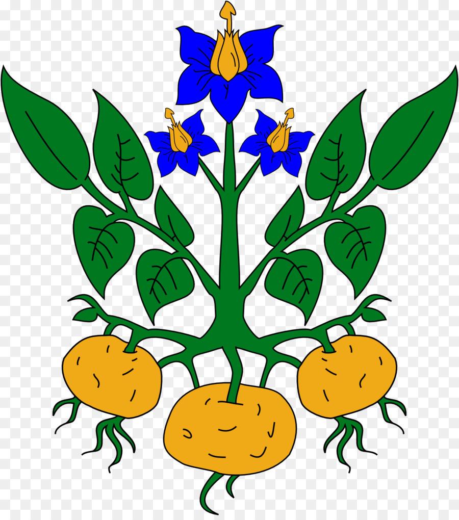 900x1020 Sweet Potato Tomato Plant Clip Art
