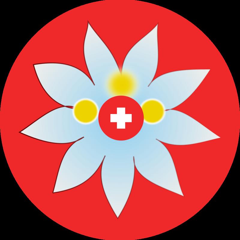 800x800 Free Clipart Swiss Edelweiss Chatard