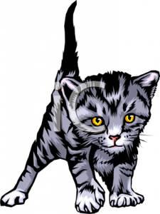 225x300 Kittens Clipart Realistic 3652272