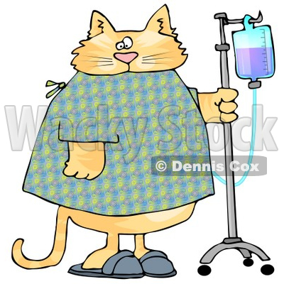 400x400 Orange Tabby Cat With An Iv Dispenser In A Hospital Clipart