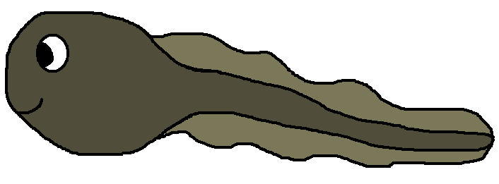 tadpole clipart at getdrawings com free for personal use tadpole rh getdrawings com Frog Clip Art cute tadpole clipart