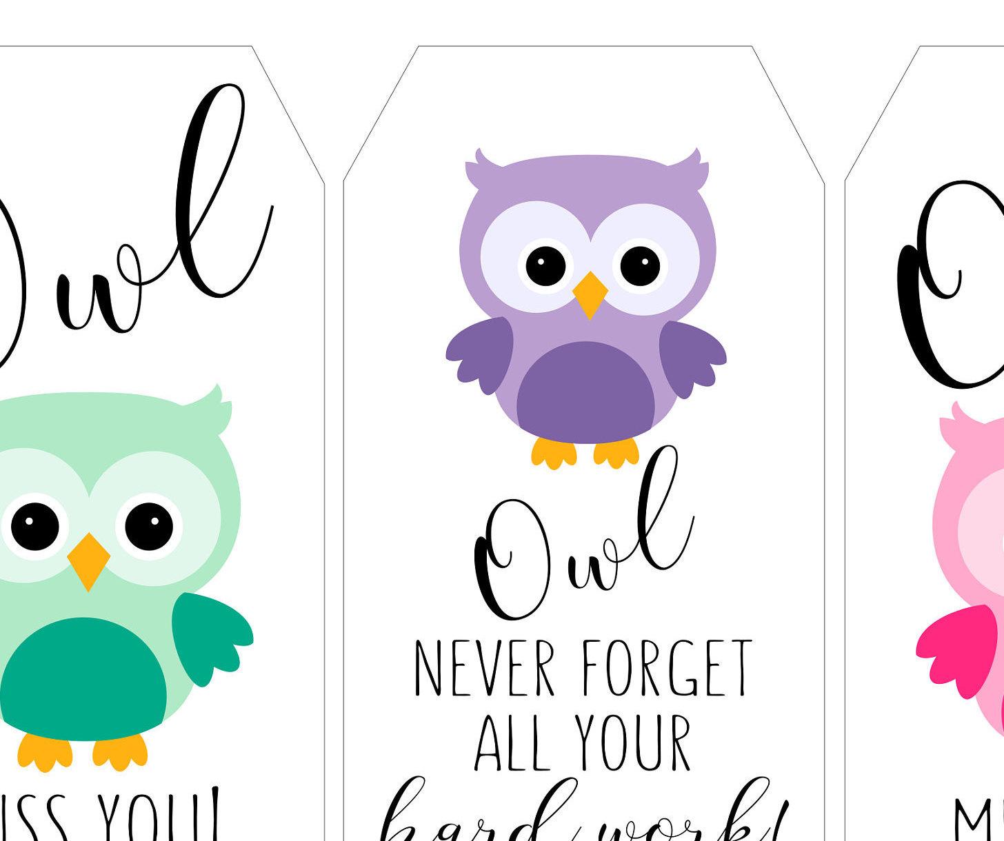1456x1220 Teacher Owl Gift Tag, Teacher Appreciation, Staff Appreciation