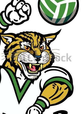 331x450 Vectors Of Bobcat Volleyball