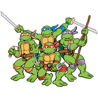 320x320 Teenage Mutant Ninja Turtles Comics