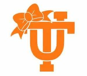 300x263 Tennessee Vols Clipart Free Images